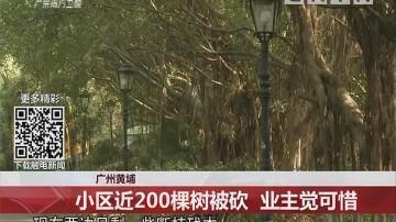 广州黄埔:小区近200棵树被砍 业主觉可惜