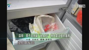 """深圳:鸽子血伪装""""处女红"""" 特大卖淫组织落网"""