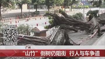 """广州:""""山竹""""倒树仍阻街 行人与车争道"""