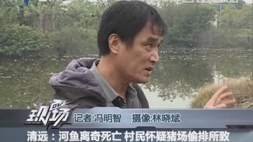 清远:河鱼离奇死亡 村民怀疑猪场偷排所致