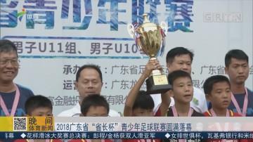 """2018广东省""""省长杯""""青少年足球联赛圆满落幕"""
