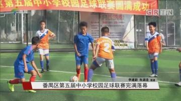 番禺区第五届中小学校园足球联赛完满落幕