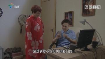 [HD][2018-12-22]外来媳妇本地郎:玉立婷婷(下)