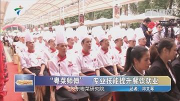 """""""粤菜师傅"""" 专业技能提升餐饮就业"""