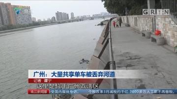 广州:大量共享单车被丢弃河道