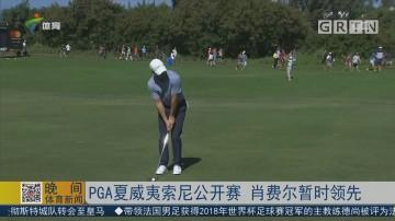 PGA夏威夷索尼公开赛 肖费尔暂时领先