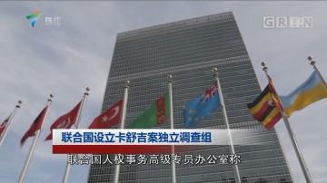 联合国设立卡舒吉案独立调查组