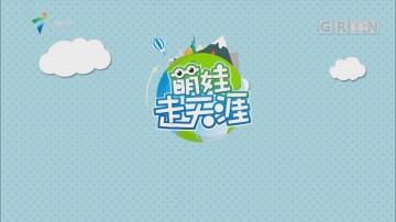 [HD][2019-01-11]全民叹世界:萌娃走天涯