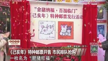 《己亥年》特种邮票开售 市民排队抢购