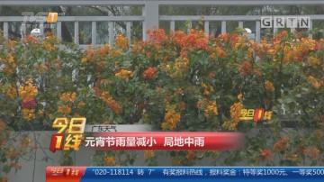 广东天气:元宵节雨量减小 局地中雨