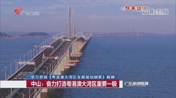 中山:奋力打造粤港澳大湾区重要一极
