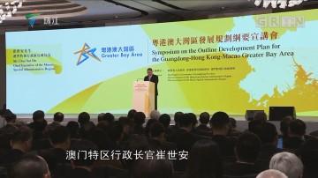 《粤港澳大湾区发展规划纲要》宣讲会在港举行