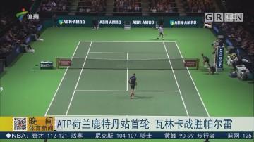ATP荷兰鹿特丹站首轮 瓦林卡战胜帕尔雷