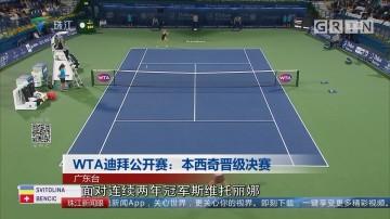 WTA迪拜公开赛:本西奇晋级决赛