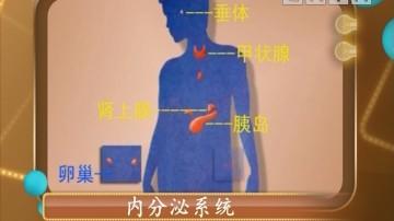 《健康生活》内分泌影响人体代谢