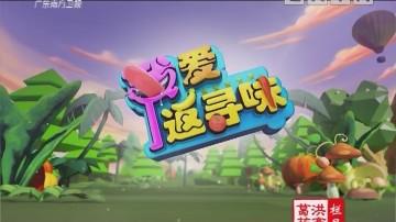 [2019-02-23]我爱返寻味:三丝香煎罗秀米粉