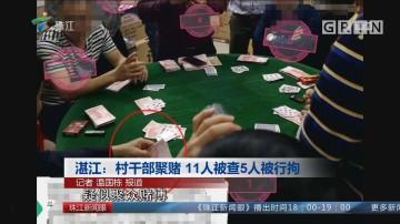 湛江:村干部聚赌 11人被查5人被行拘