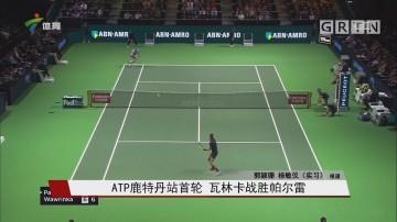 ATP鹿特丹站首轮 瓦林卡战胜帕尔雷
