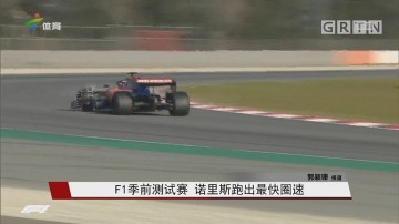 F1季?#23433;?#35797;赛 诺里斯跑出最快圈速