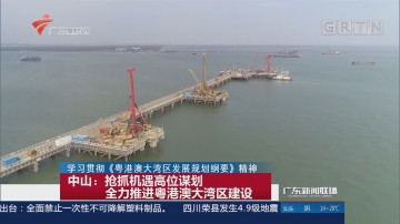 中山:抢抓机遇高位谋划 全力推进粤港澳大湾区建设