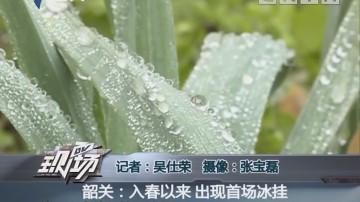 韶关:入春以来 出现首场冰挂