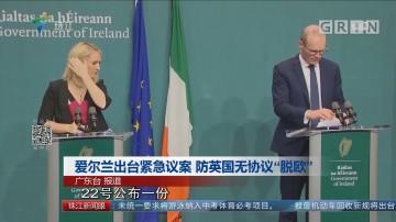 """爱尔兰出台紧急议案 防英国无协议""""脱欧"""""""