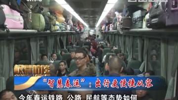 """[2019-02-02]权威访谈:""""智慧春运"""":出行更便捷从容"""