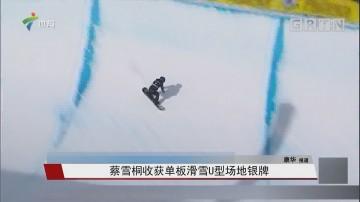 蔡雪桐收获单板滑雪U型场地银牌