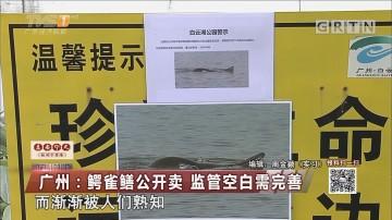 广州:鳄雀鳝公开卖 监管空白需完善
