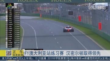 F1澳大利亚站练习赛 汉密尔顿取得领先