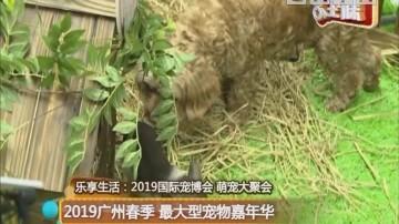 2019广州春季 最大型宠物嘉年华