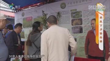 [HD][2019-03-18]摇钱树:科技下乡保春耕