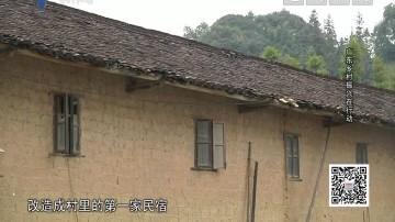 [2019-03-13]社会纵横:广东乡村振兴在行动
