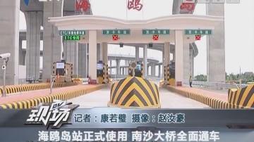 海鸥岛站正式使用 南沙大桥全面通车