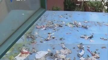 中山:二楼住户偷搭遮雨棚 三楼住户长期受困扰