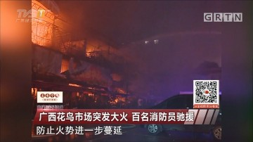 广西花鸟市场突发大火 百名消防员驰援