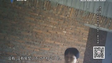 [2019-04-15]社会纵横:湛江雷州:大面积的农业用地上盖起不少豪华违建