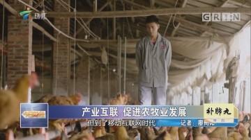 产业互联 促进农牧业发展