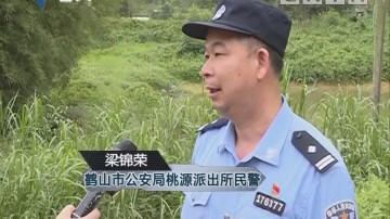 江门鹤山桃源镇:施工挖出蟒蛇