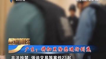 [2019-05-25]权威访谈:广东:将扫黑除恶进行到底