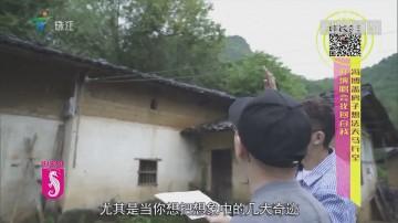 冯博盖房子想法天马行空 开演唱会找回自我