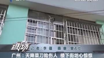 广州:天降菜?#26029;?#20260;人 楼下街坊心惊惊