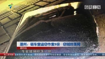 潮州:砸车窗盗窃作案9宗 窃贼终落网
