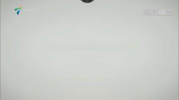 [HD][2019-06-10]文化珠江:光影守护者