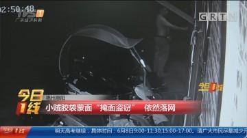 """惠州惠阳:小贼胶袋蒙面""""掩面盗窃"""" 依然落网"""