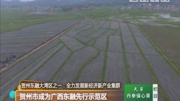 贺州东融大湾区之一:贺州市成为广西东融先行示范区