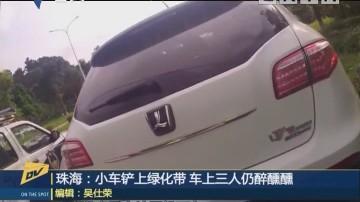 珠海:小車鏟上綠化帶 車上三人仍醉醺醺