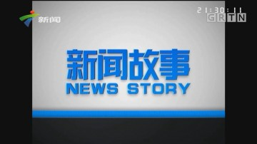 [HD][2019-06-06]新聞故事:收網(上)