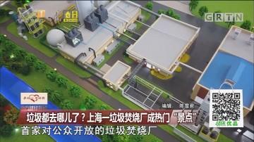 """垃圾都去哪儿了?上海一垃圾焚烧厂成热门""""景点"""""""