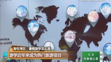 智精湾区:暑假游学怎么选